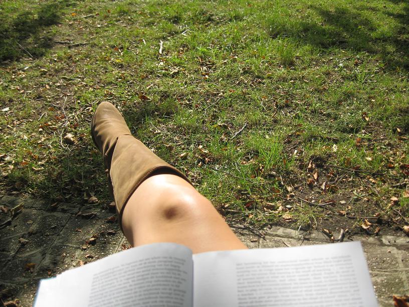 studeren-in-het-park-3.jpg
